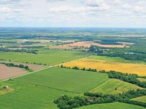 farmland lindseybenne-fjm_0704